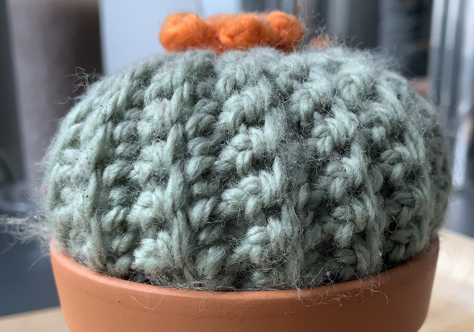 A crocheted cactus.