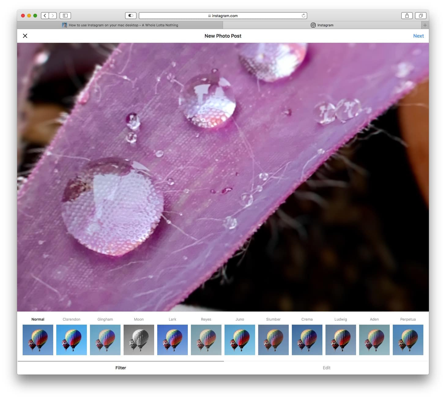 Use Instagram's filters in Safari on the Mac.