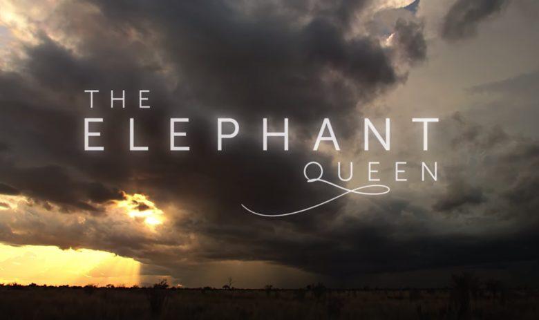 Theelephantqueen