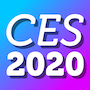 CES-2020-bug-2