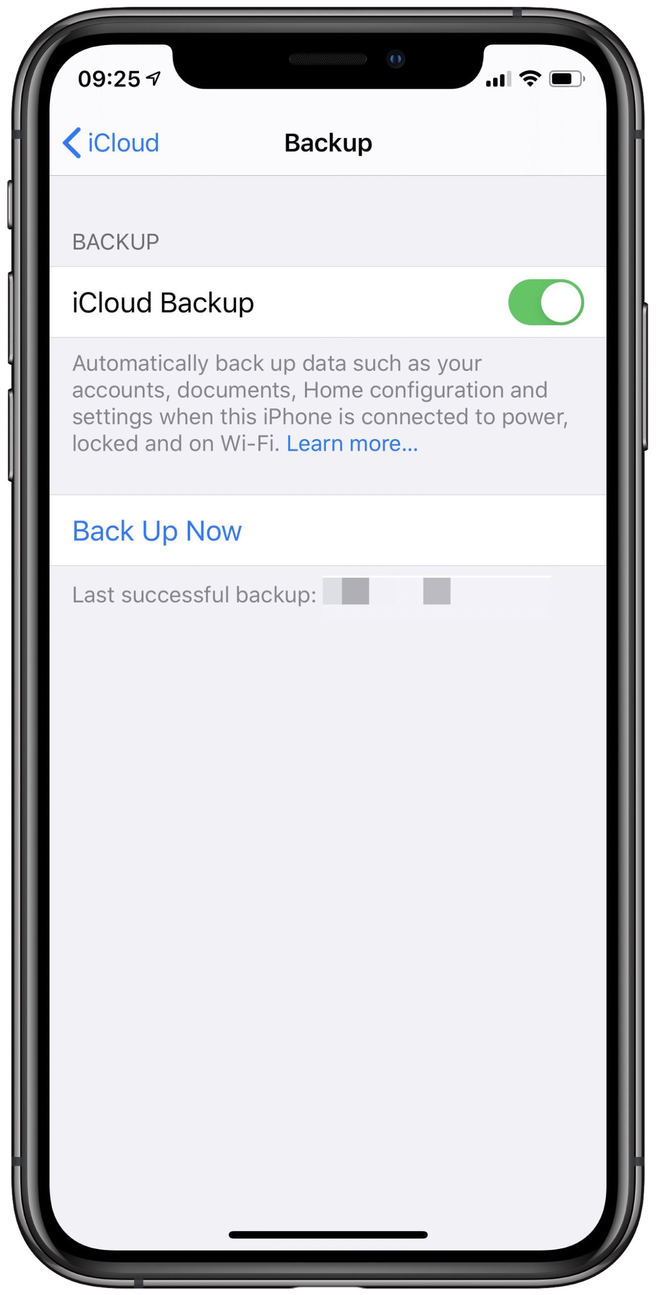 Switch off iCloud backups here.