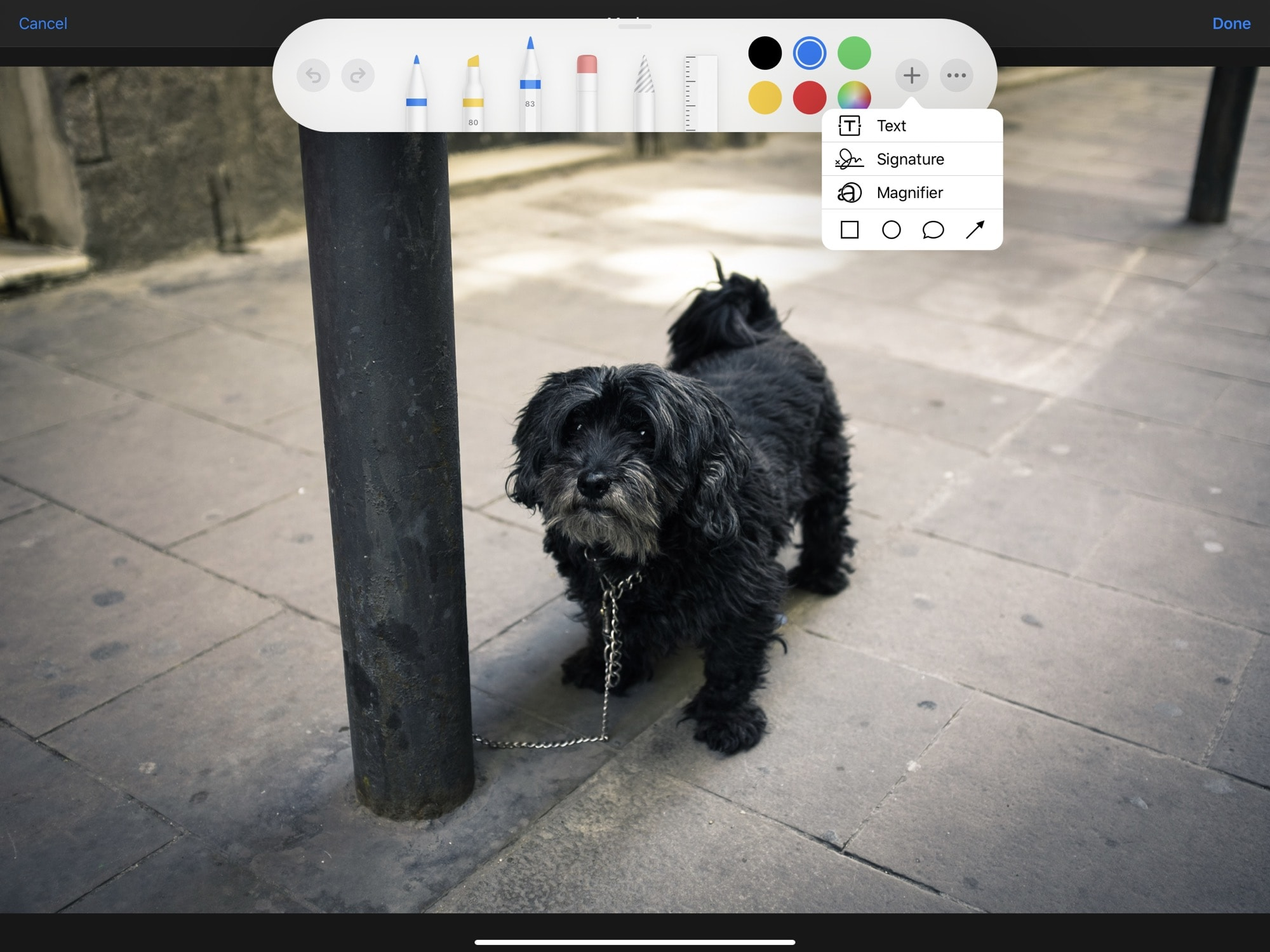 The built-in iOS Markup tool can add captions to any photo.