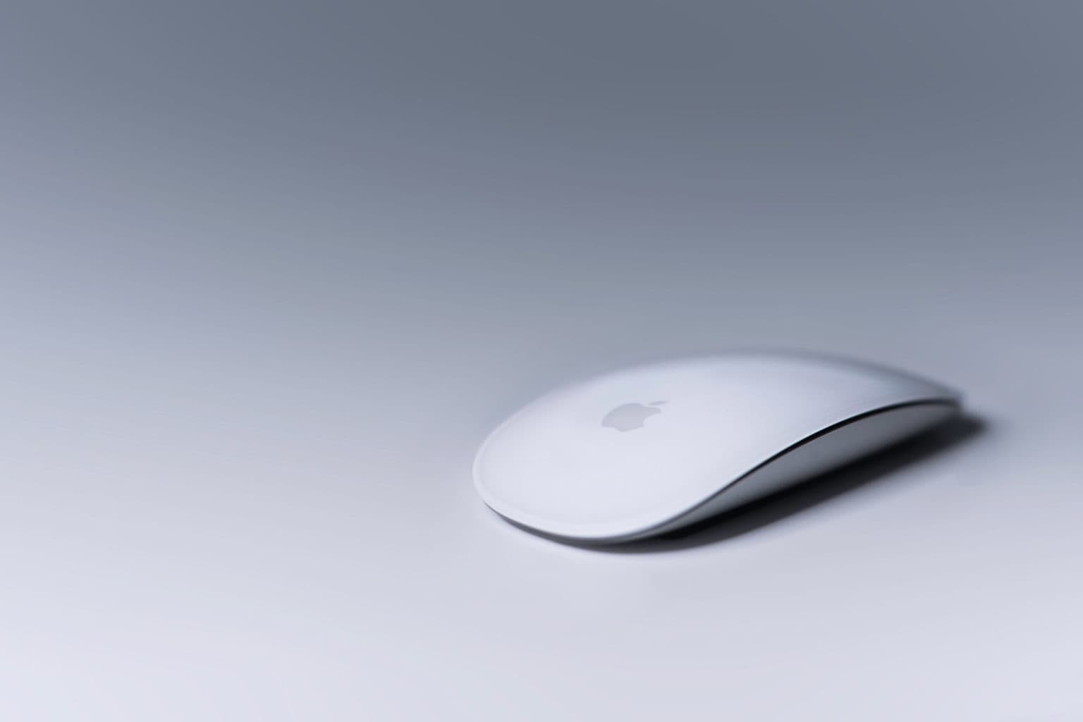 Even the Magic Mouse combines touch, drag and drop better than the iPad.