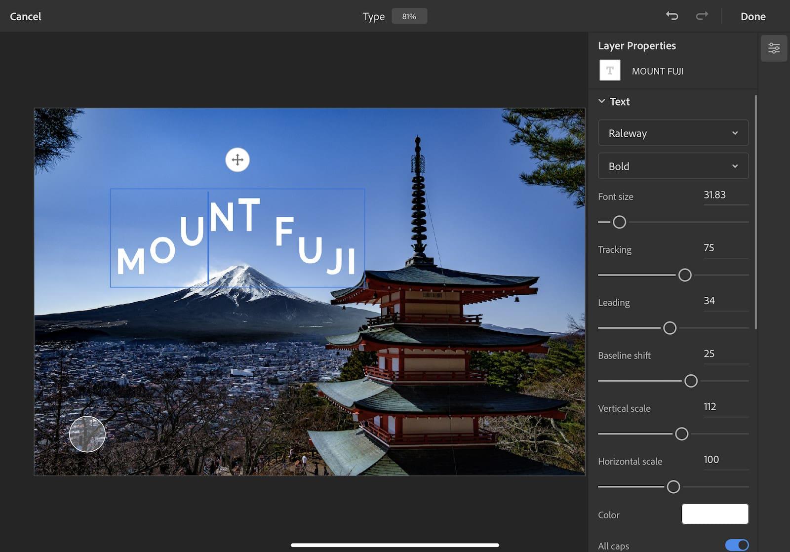 Photoshop-Type-settings-iPad