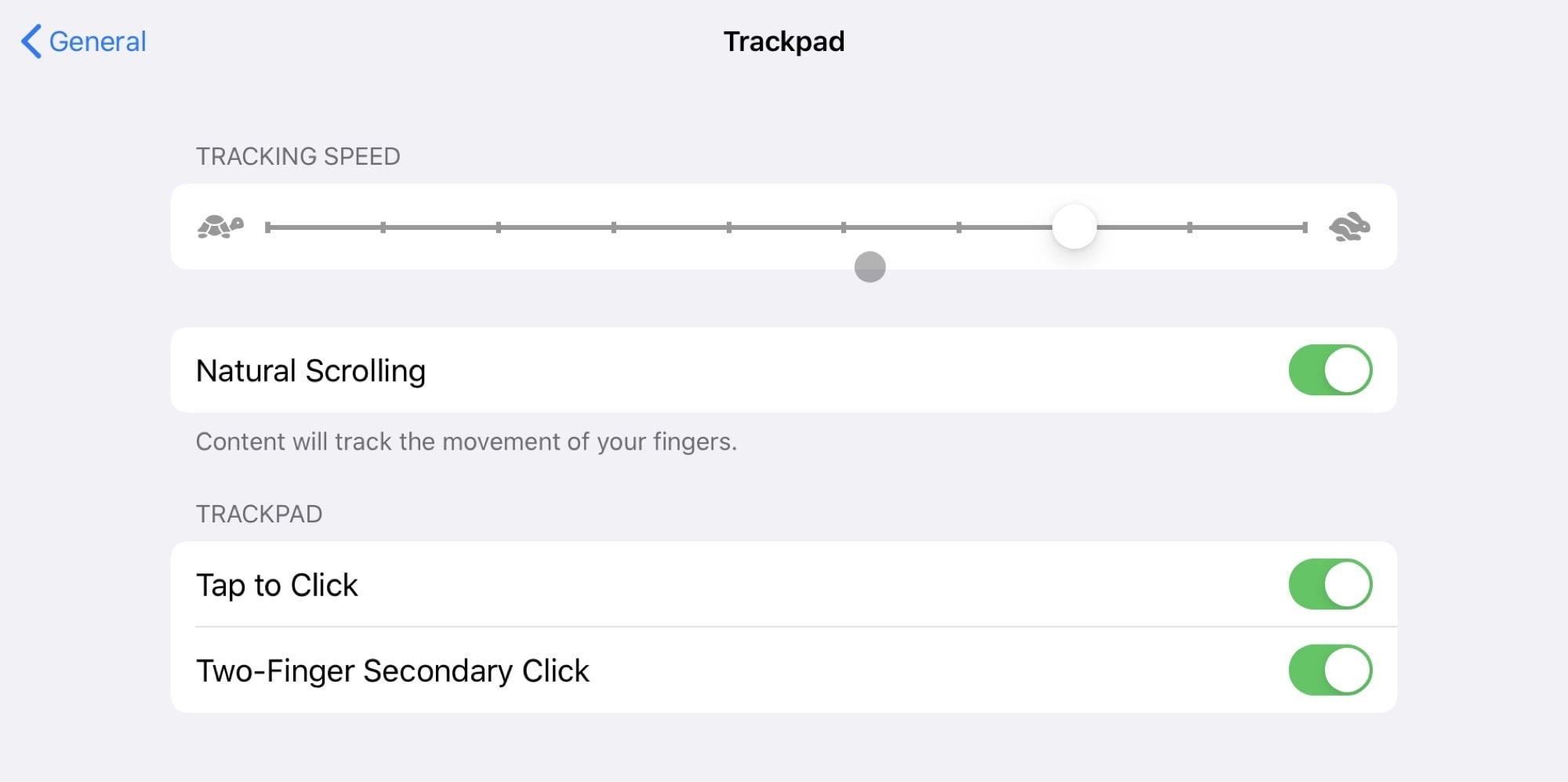 The regular trackpad settings offer several ways to customize iPad trackpad options.