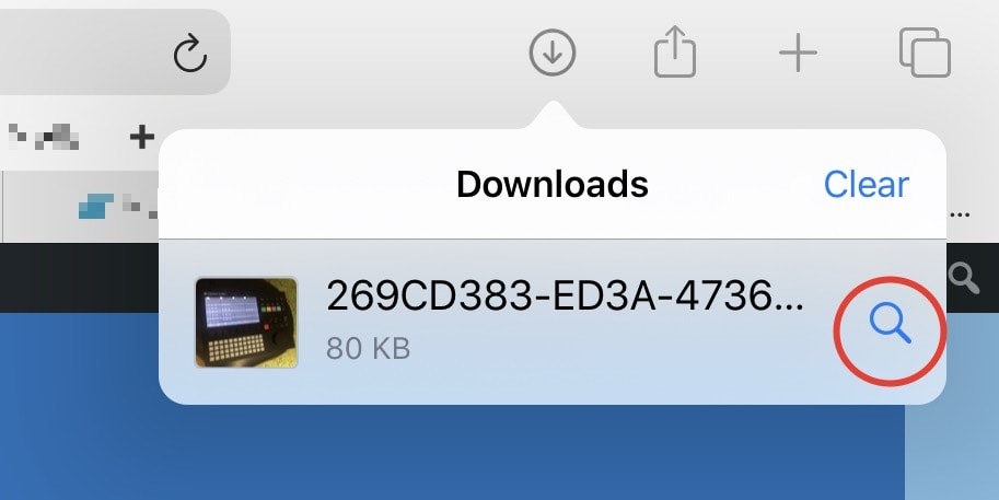 This is what Safari's downloads manager looks like.