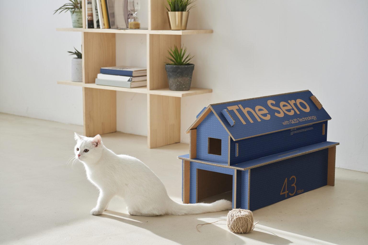 Samsung-TV-box-cat-house