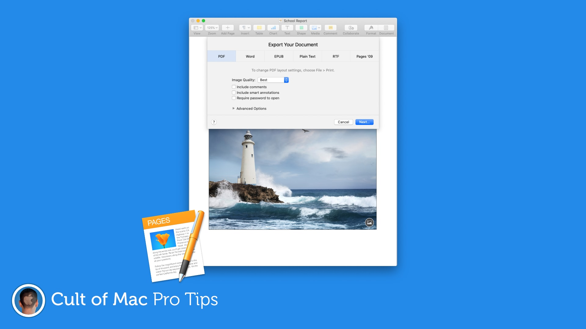 Save Pages Documents As A Pdf To Prevent Unwanted Edits Pro Tip
