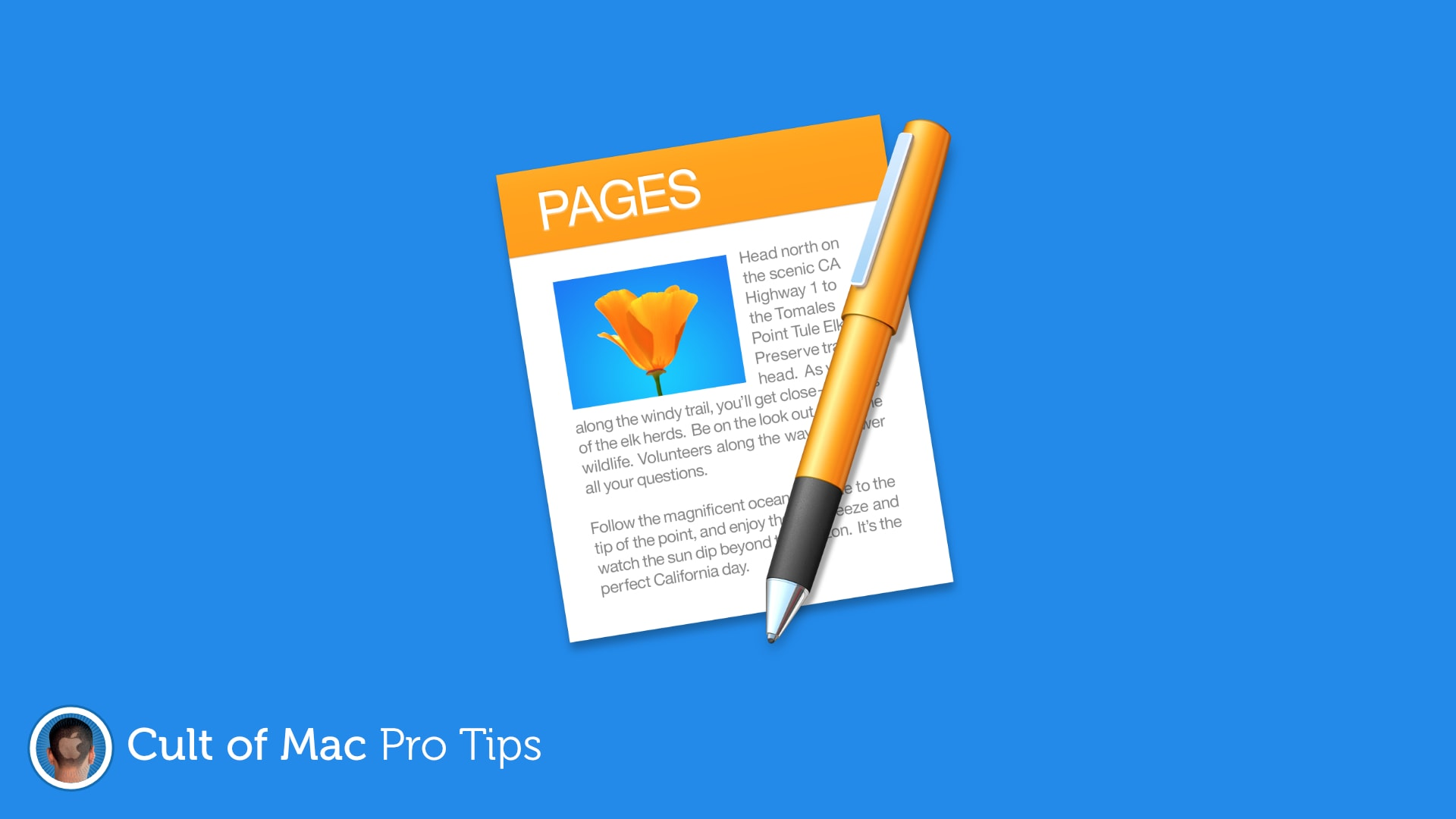 Track changes so you don't miss edits in shared Pages documents [Pro tip]