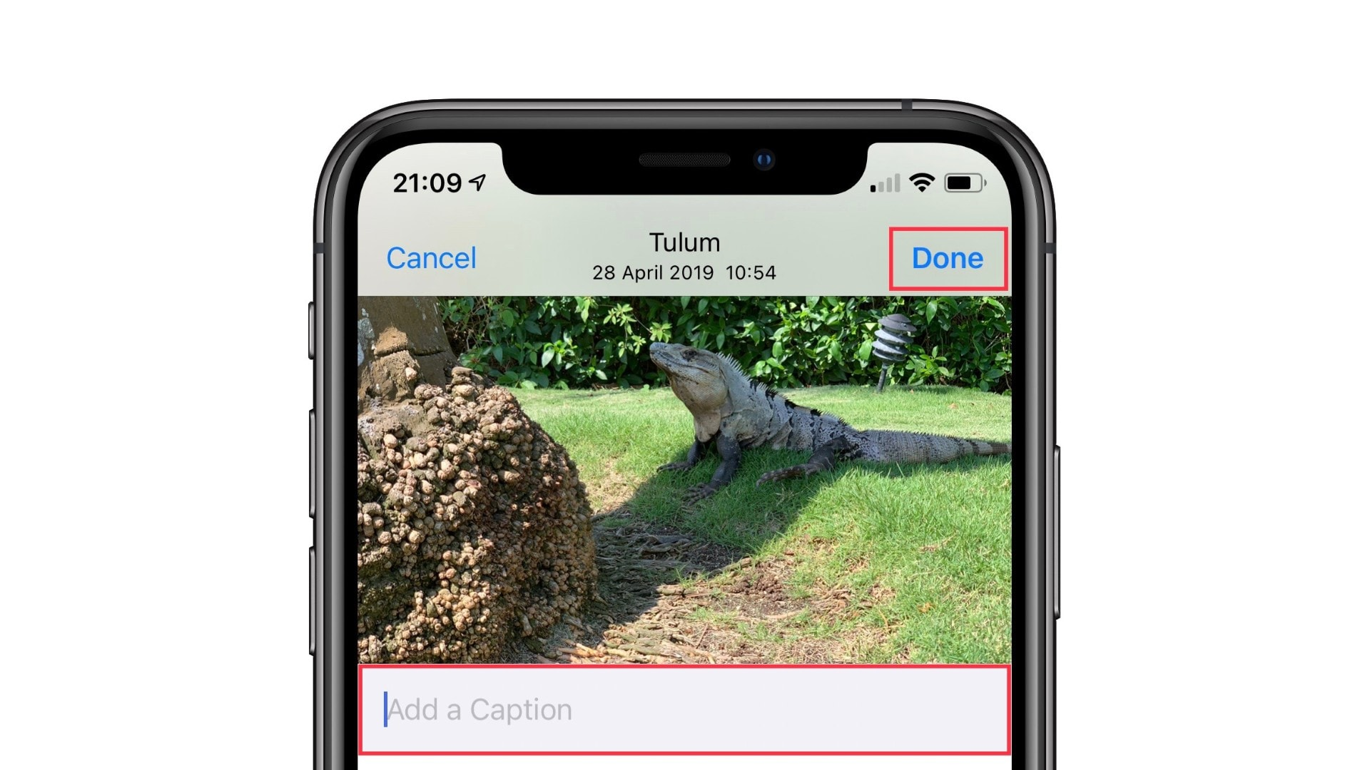 How to add captions to photos in iOS 14