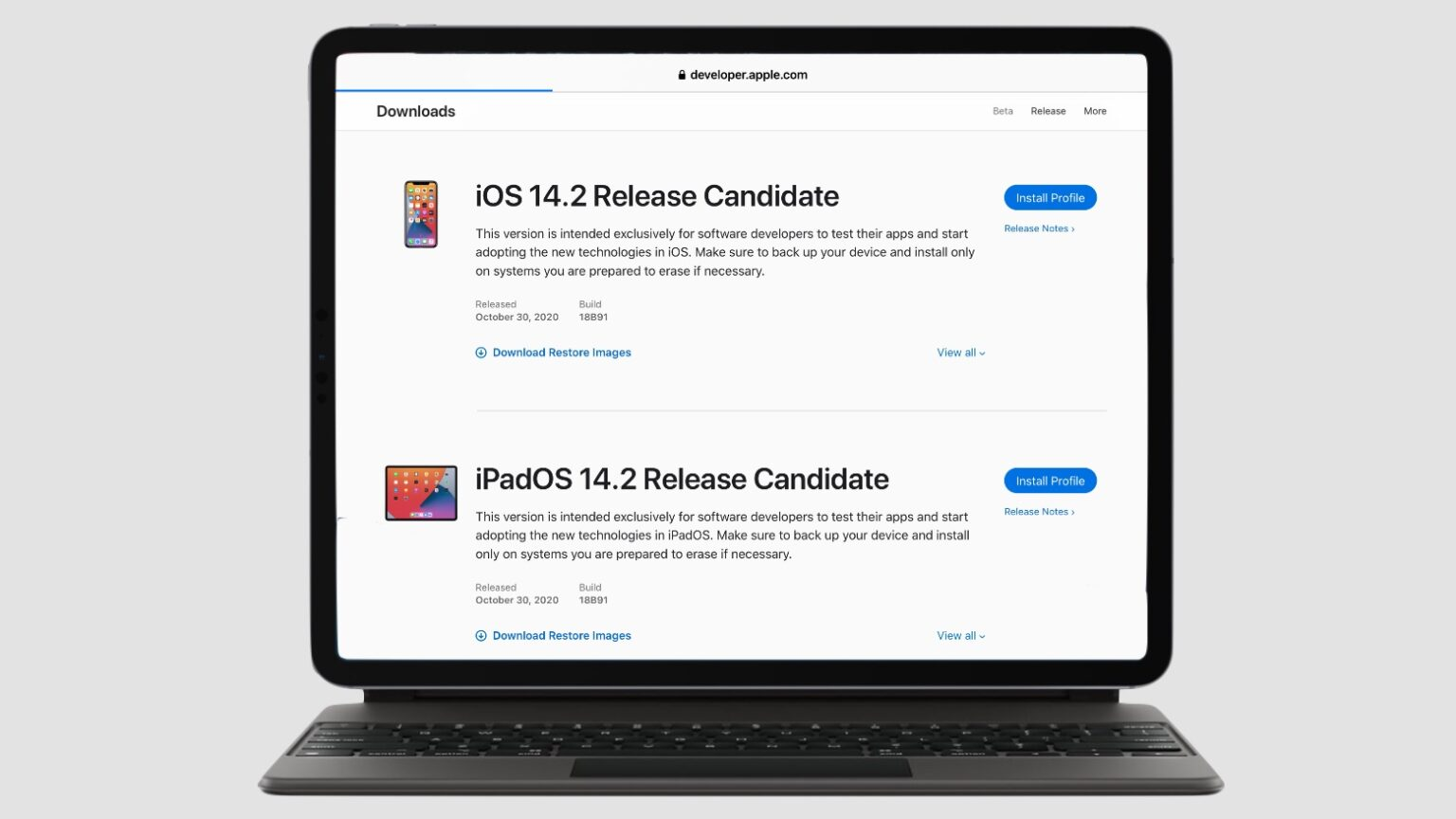 The iOS 14.2 golden master, along with the iPadOS equivalent, is available to developers.