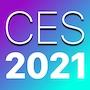 CES 2021 bug