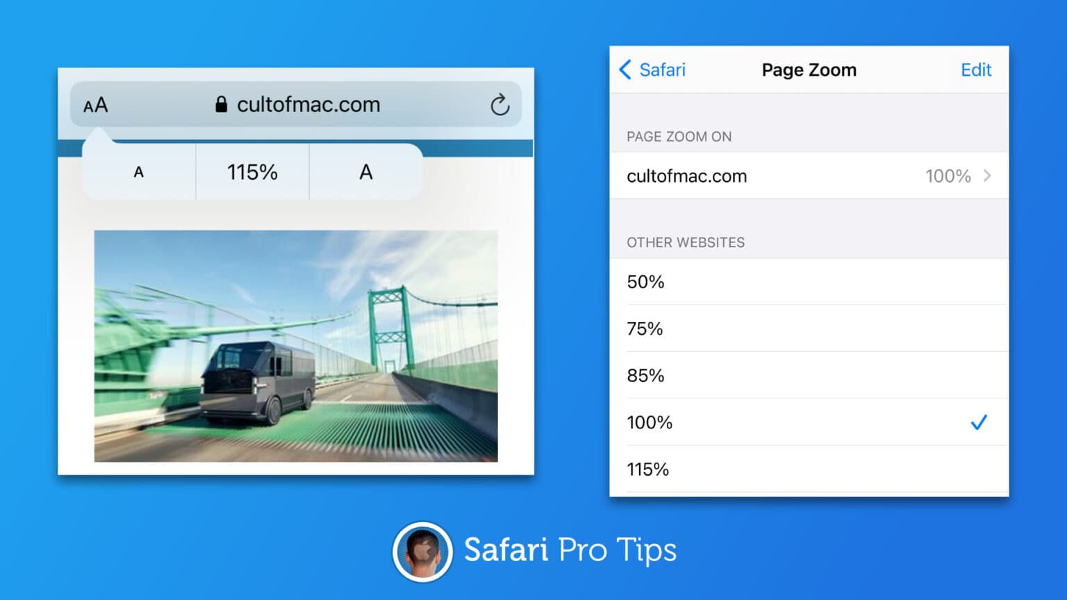 How to enable Page Zoom in Safari