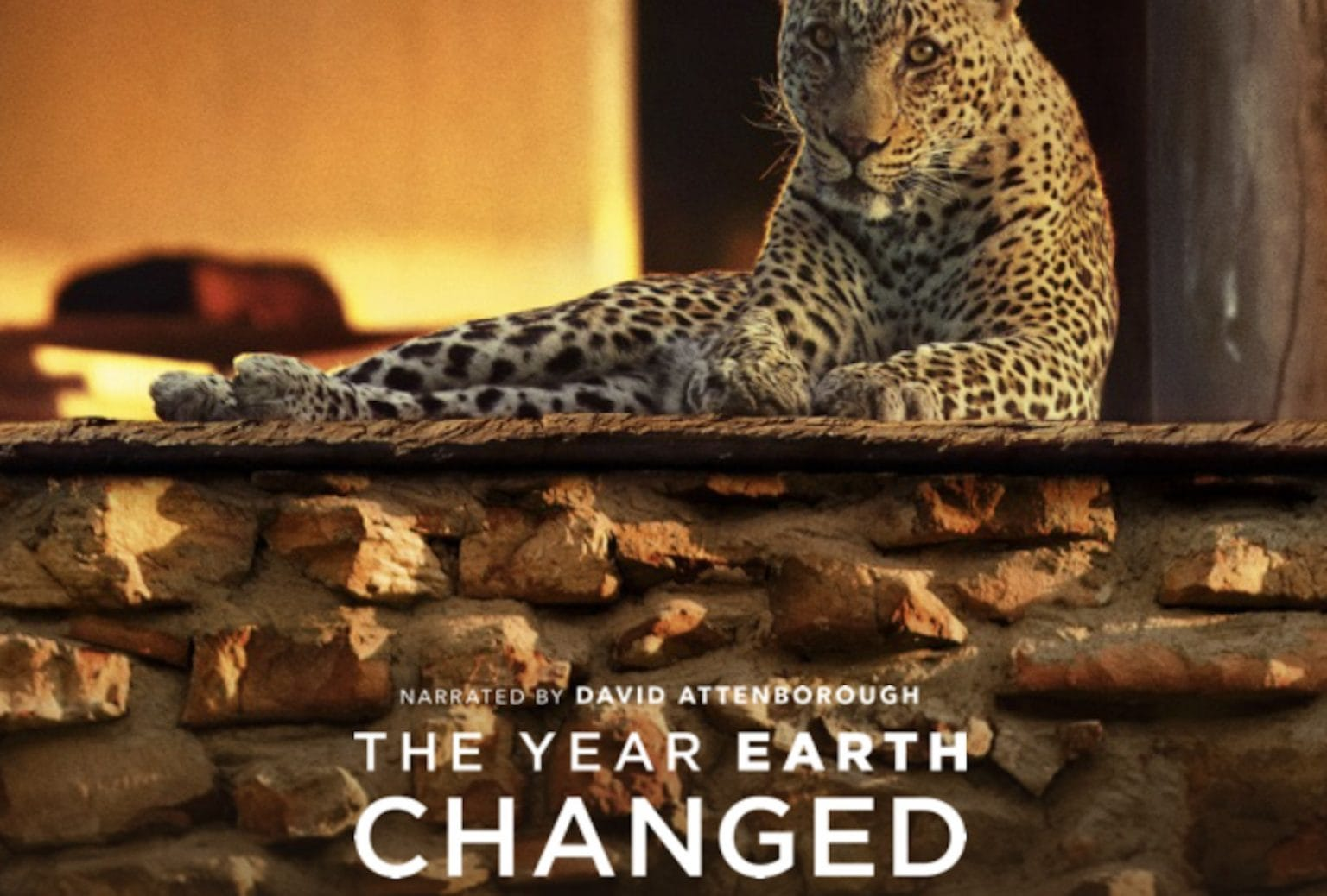 The Year Earth Changed 1