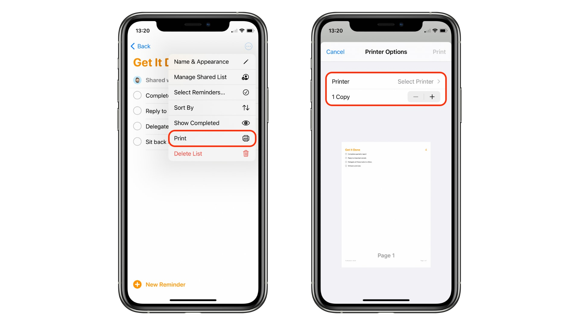 How to print a list from Reminders