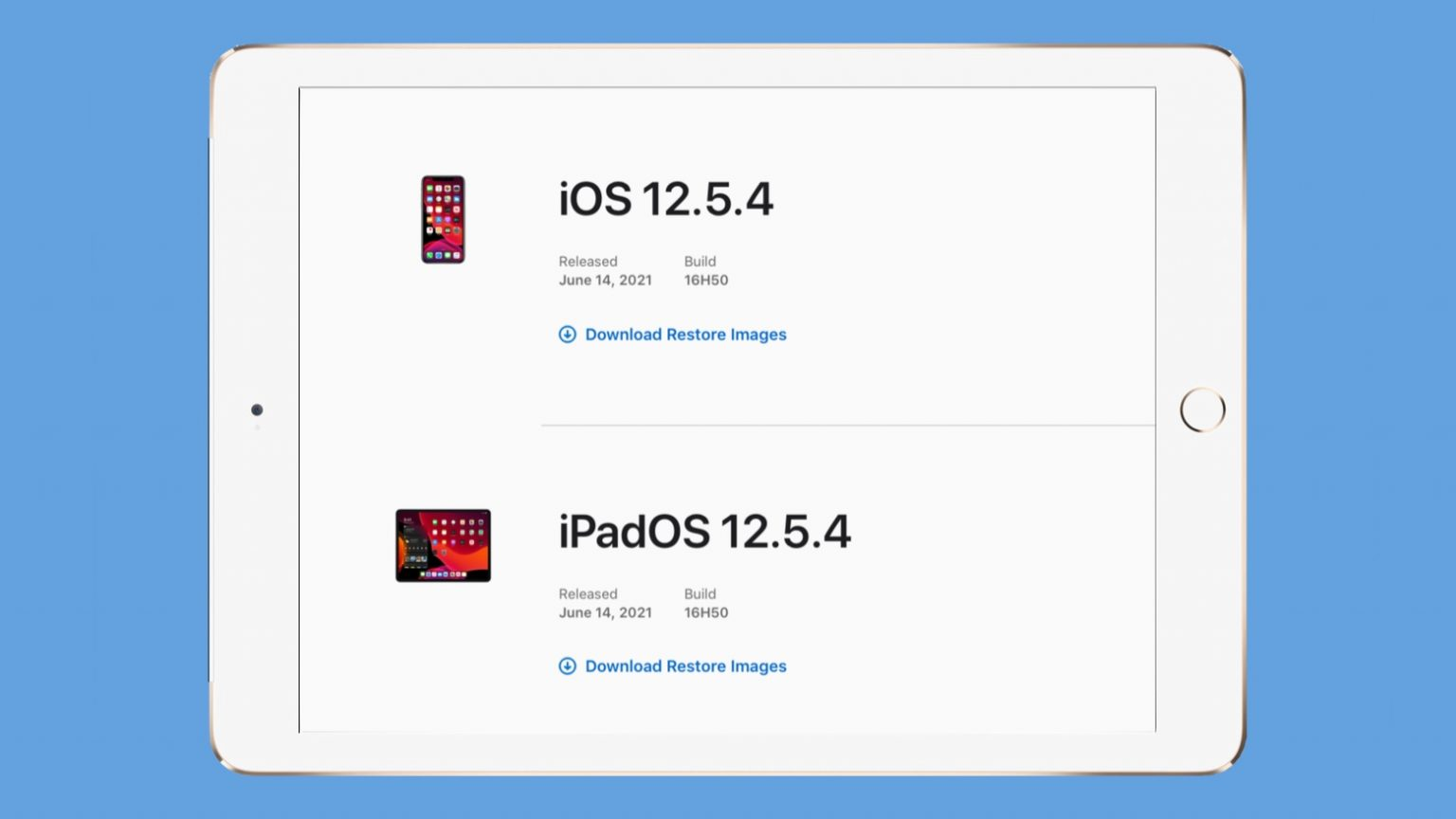 iOS 12.5.4 and iPadOS 12.5.4 close security holes for older iPhones, iPads