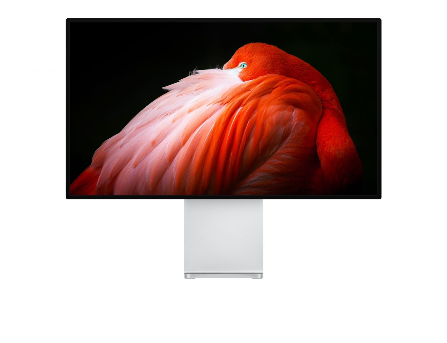 A new Apple display may replace the Pro Display XDR.