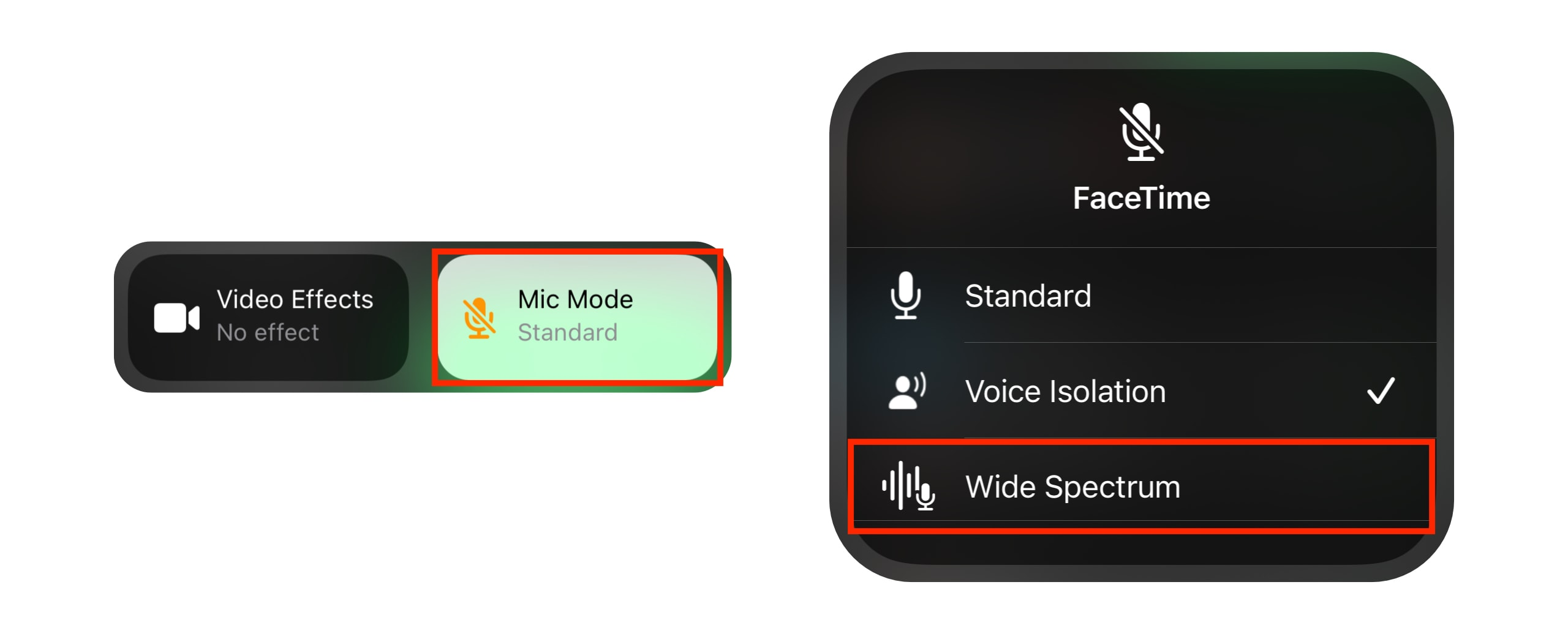 Enable wide spectrum audio for FaceTime calls: Select Mic Mode, then Wide Spectrum