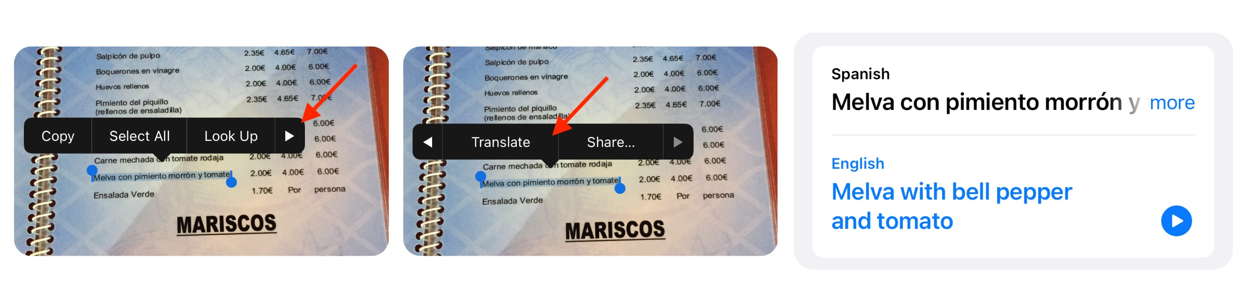 Translate text in photos in iOS 15