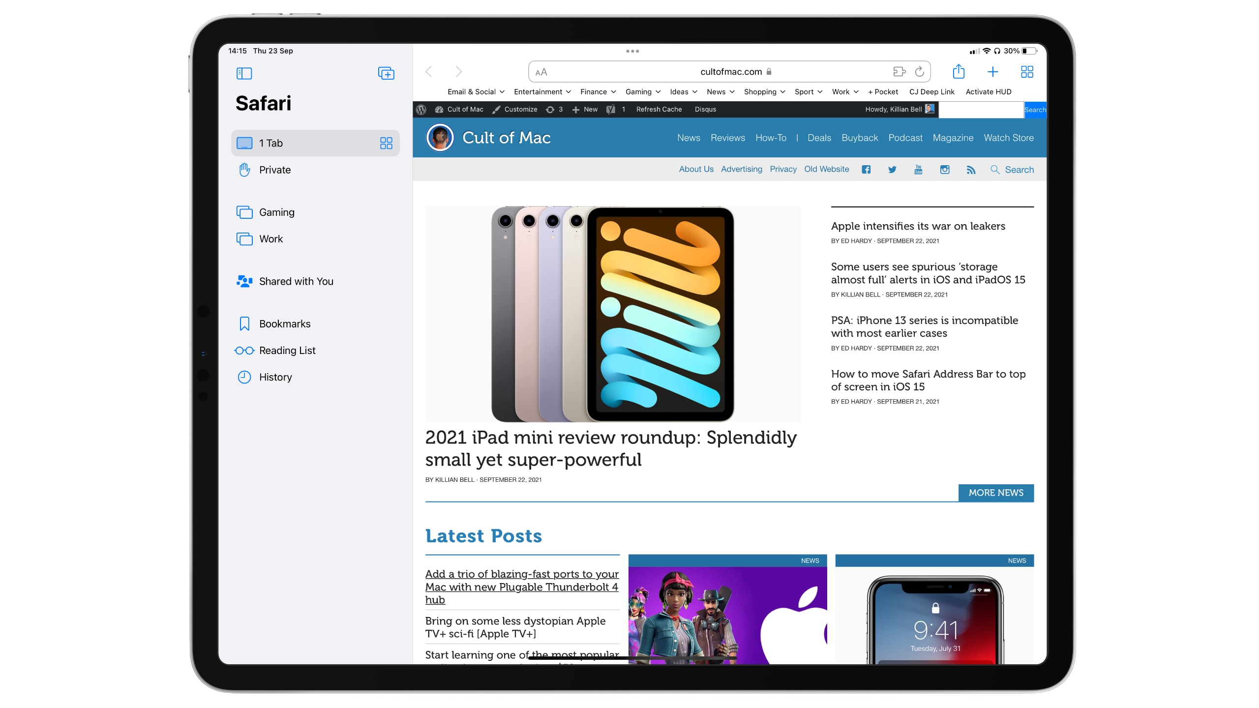 iPadOS 15 review